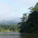 The Borneo Initiative | Branding Office Furniture